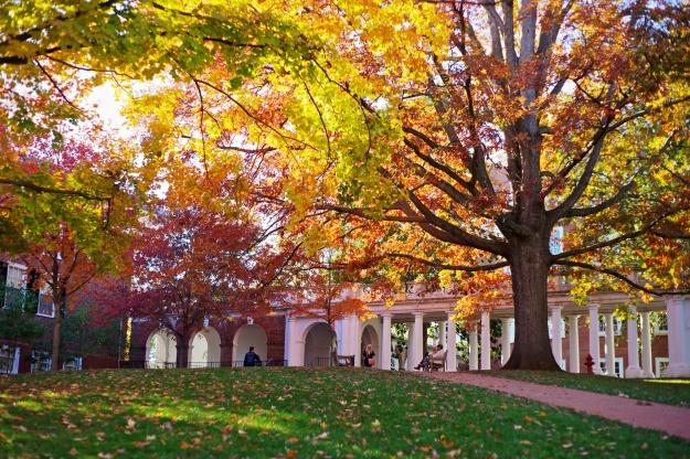 Near the University of Virginia rotunda.