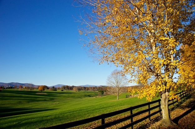 Virginia countryside.
