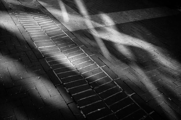 150423-seelight-0001