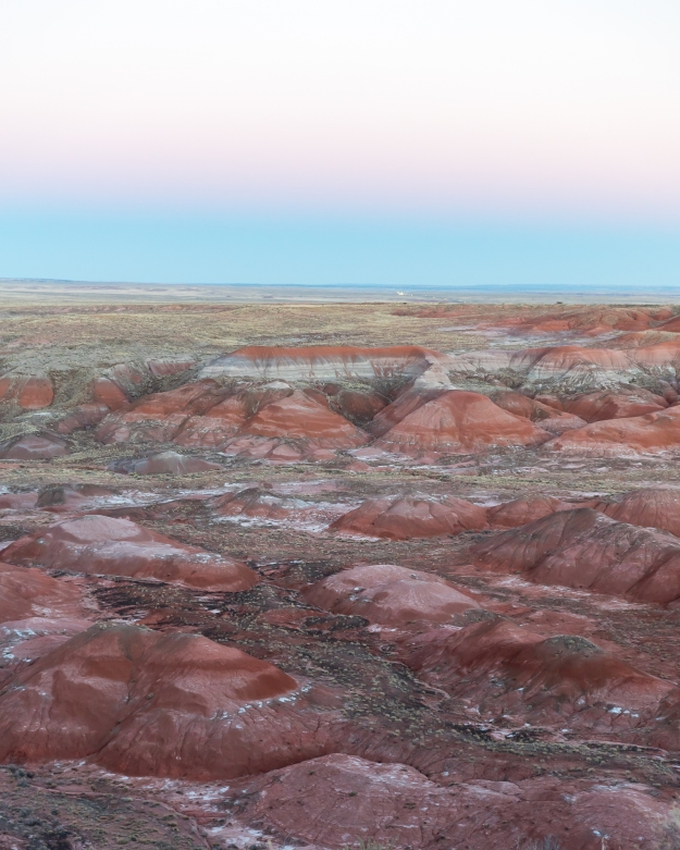 151128-petrified-forest-08657