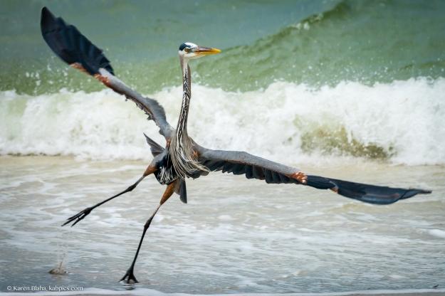 160105-boca-grande-beach-1988-edit-160105-edit-160105