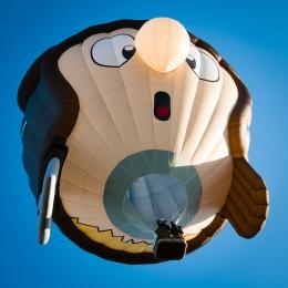 Aviator Balloon